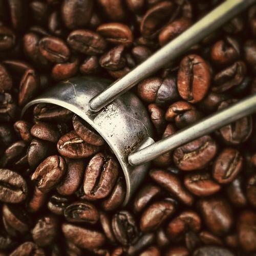 コーヒーとバスク・シャツ